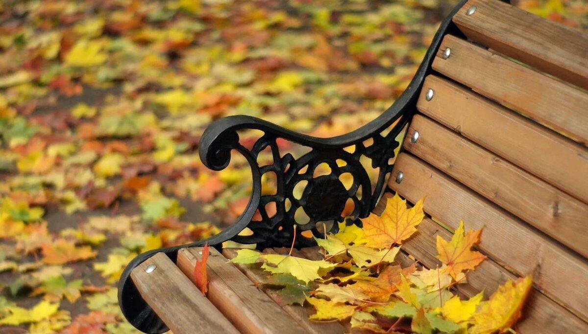картинки осень скамейки фонарь пожелания словах