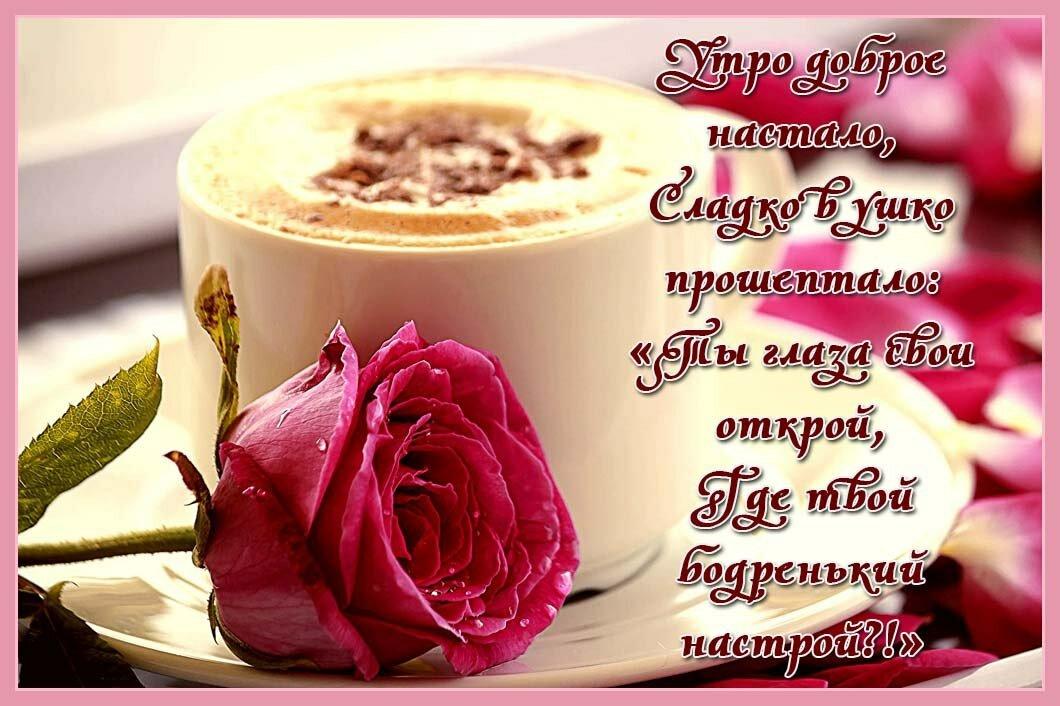 Красивая утренняя открытка для девушки, для