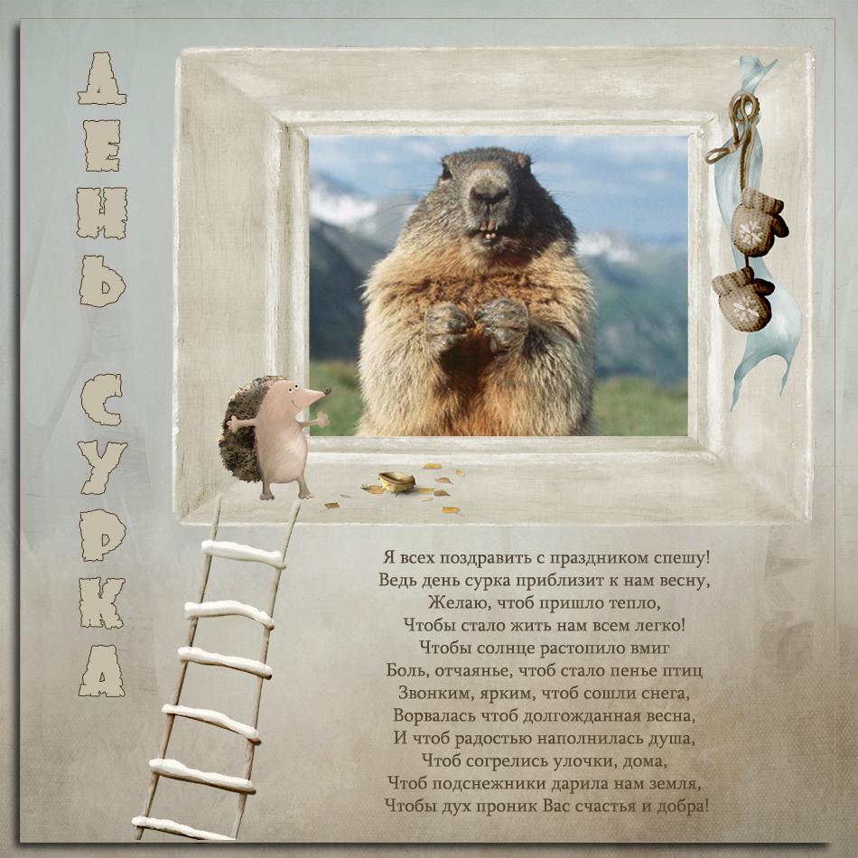 Годовщиной, открытка на день сурка