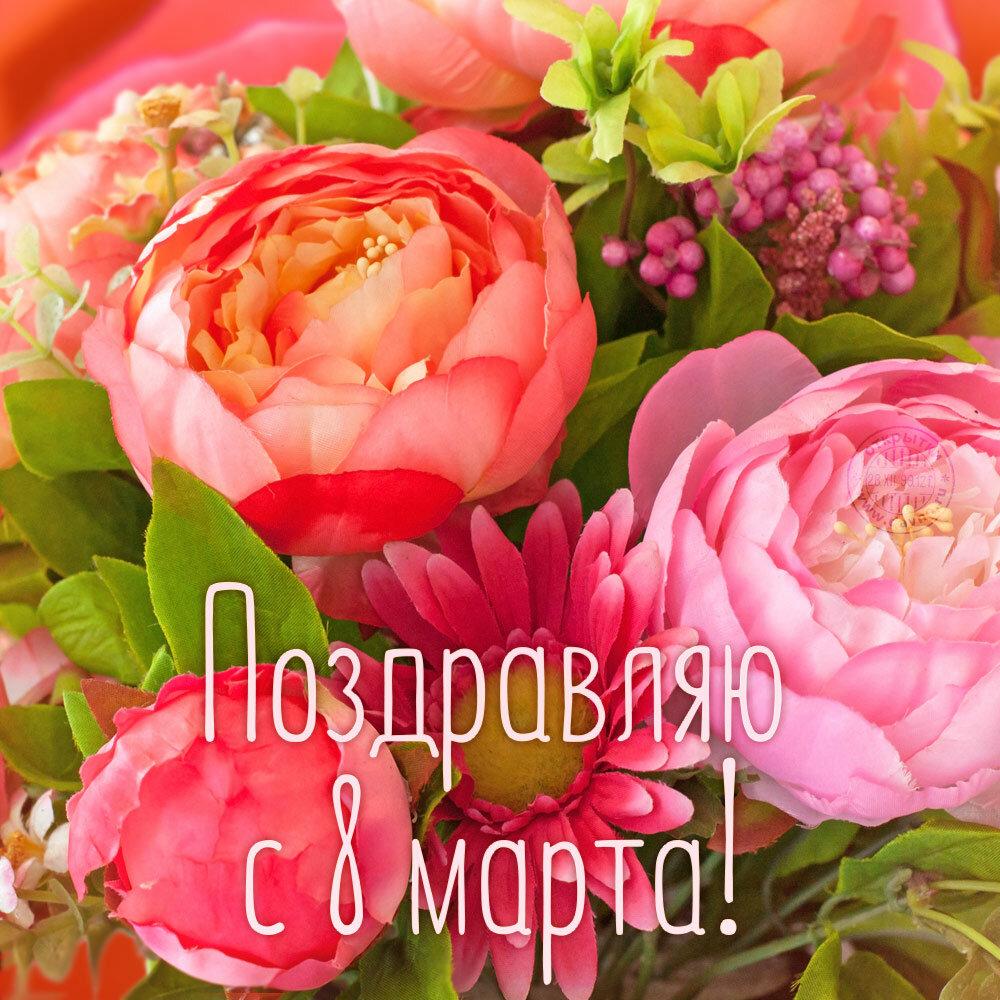 Дне учителя, открытка к 8 марта пионы для любимой мамы
