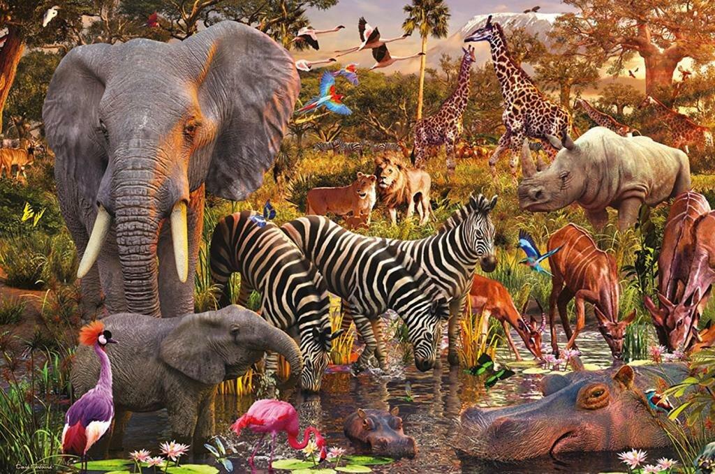 видом деятельности мир животных картинки и интересные вещи выбрать частоту