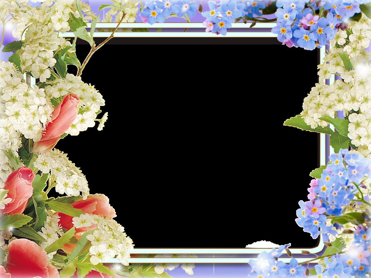 Шаблон картинки для поздравления, открытки мая