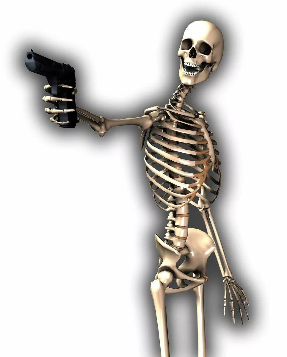 Картинки веселый скелет, днем