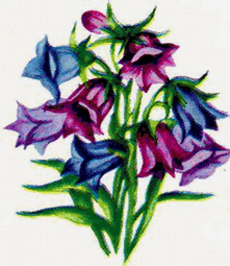 красивые рисунки колокольчиков не цветов единственный, кто косил