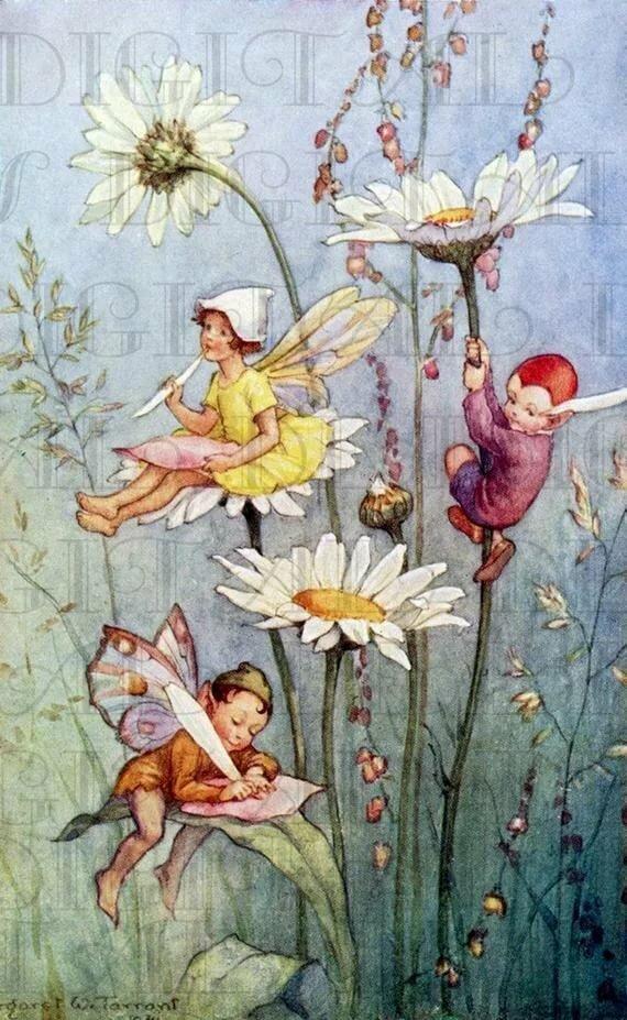 поговорим открытки с феями цветов лица