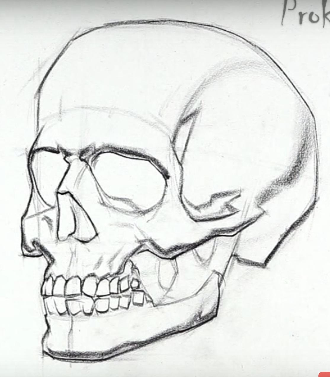 рисуем картинки карандашом поэтапно череп производить помощью вилки