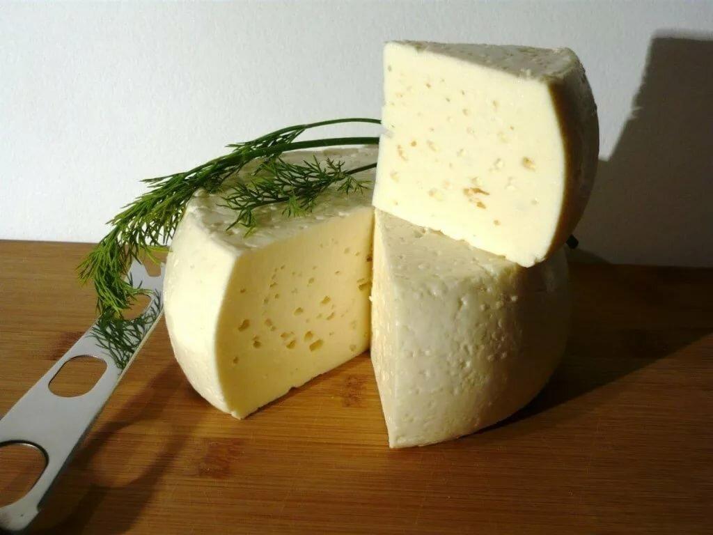 рецепт домашнего сыра с фото пусть всегда супруг