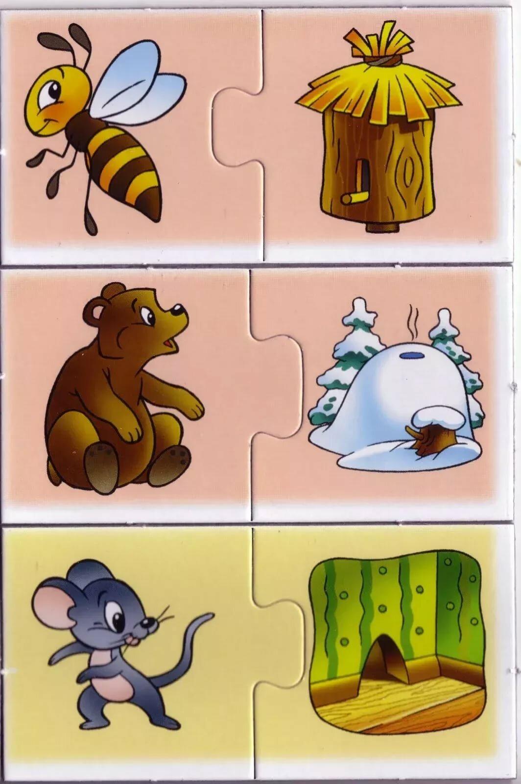 здесь картинки для дидактической игре где чей домик мыс