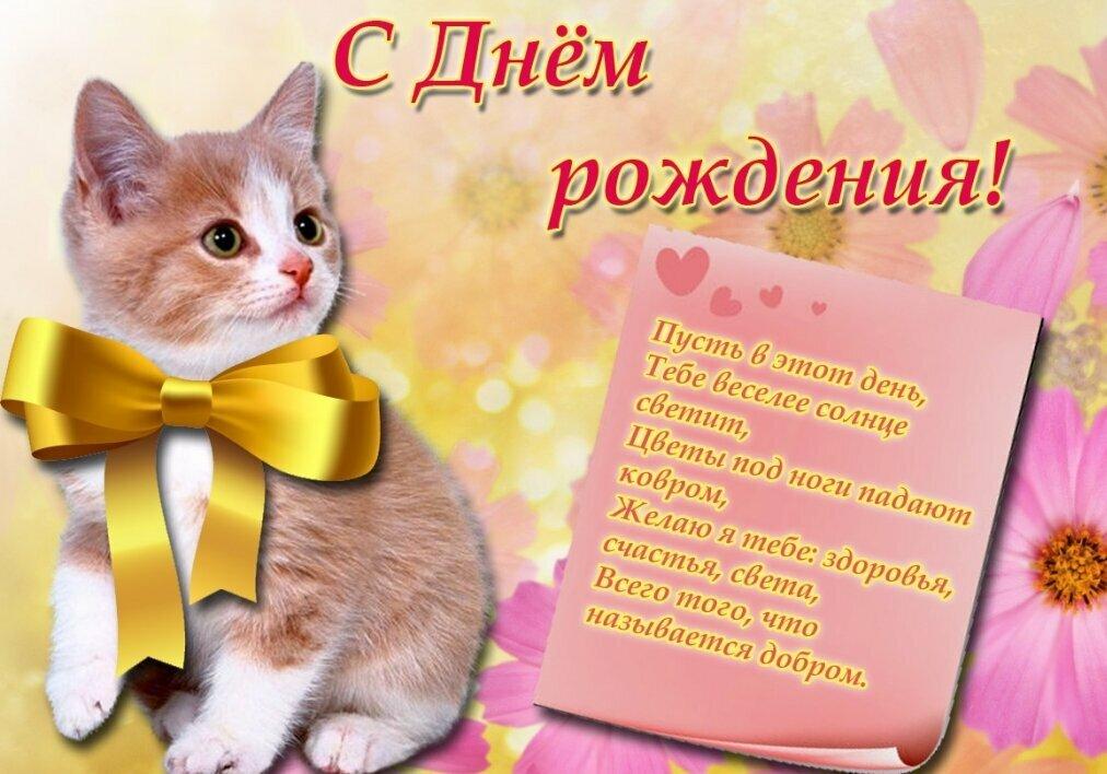 Своими руками, котята картинки с днем рождения