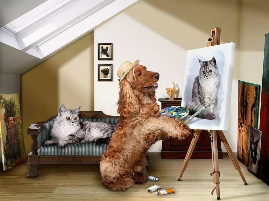 Смешные картинки и картины