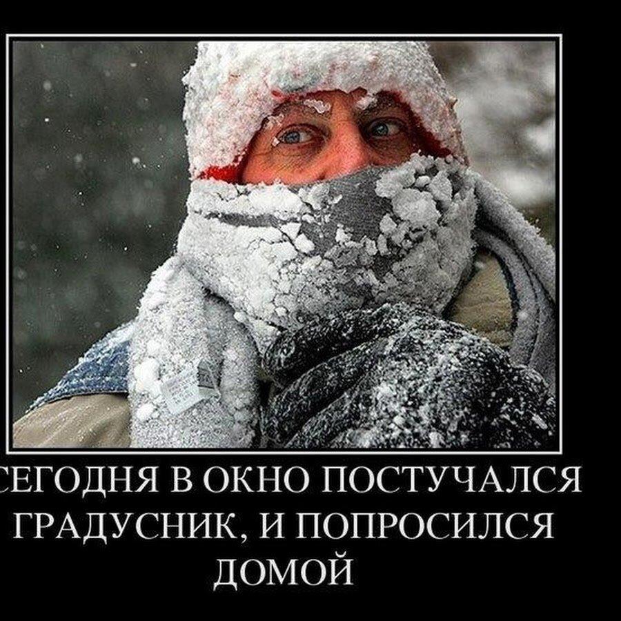 Смешные картинки про холод, днем