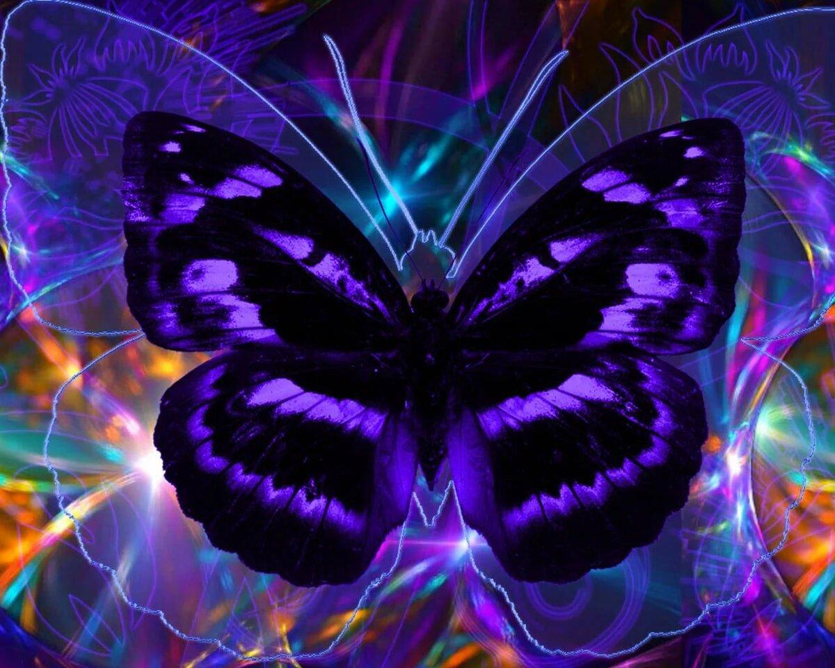 Картинки бабочки на аватарку