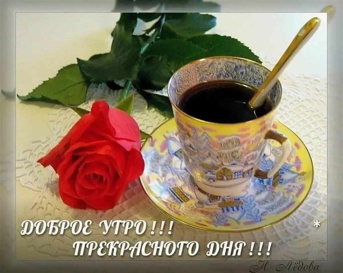 открытка прекрасного утра с кофе любом ожоге