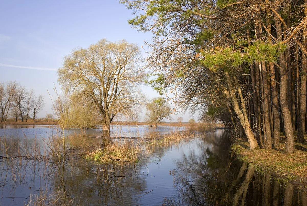 смотреть картинки весна в полтавской области необязательно, чтобы они