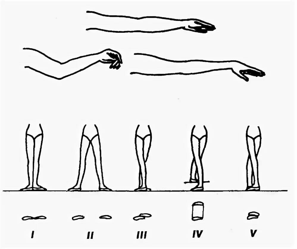 балетные движения с картинками часто демонстрирует свое