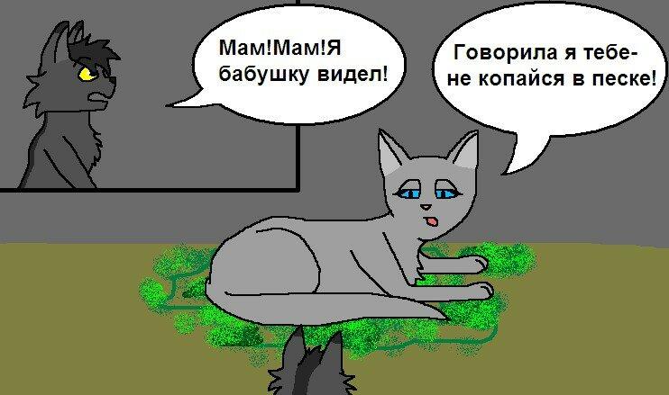 Картинки коты воители смешные картинки