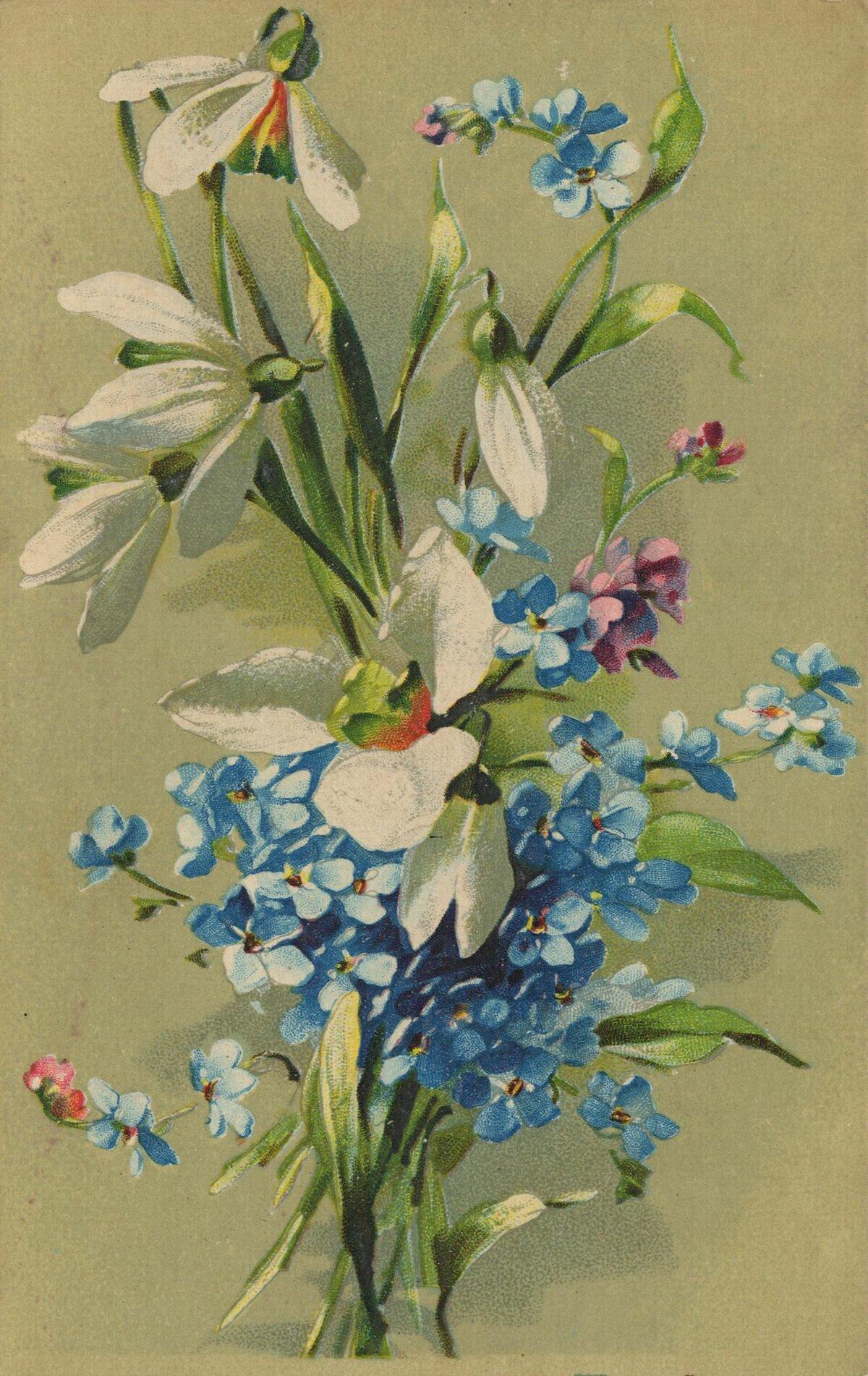 Февраля девушками, цветы в старых открытках