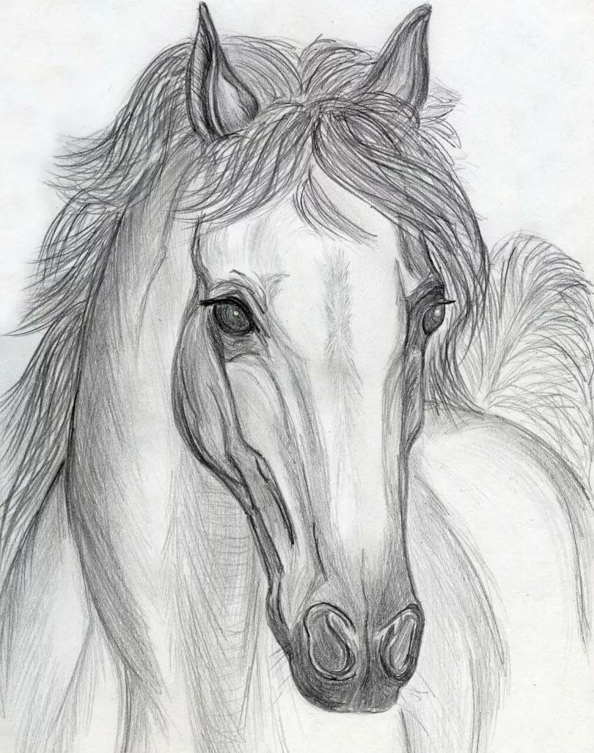 Нарисовать самые красивые картинки карандашом, картинки ммдемс открытки