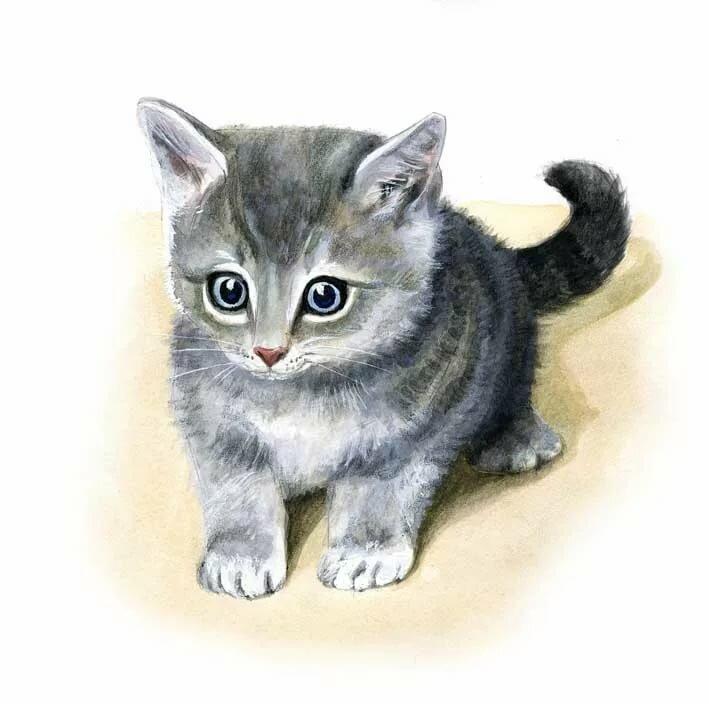 Картинки котенка для детей