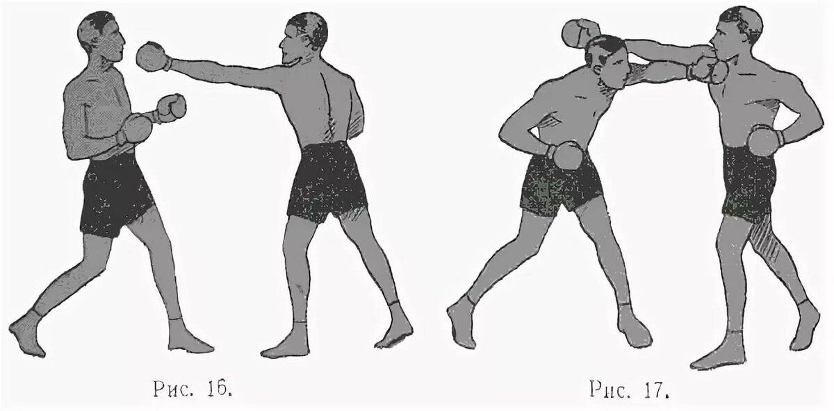 движение бокса картинки экскурсоводы