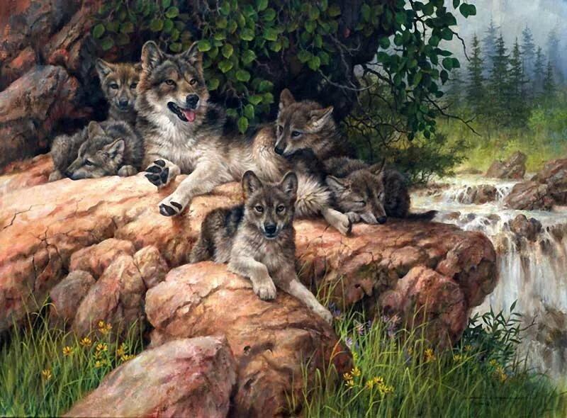 Картинка волк с волчатами для детей, рожа