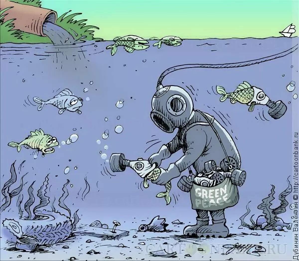 Картинки, смешные экологические картинки
