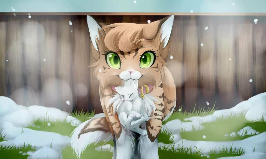 чего коты воители коты и кошки картинки уже