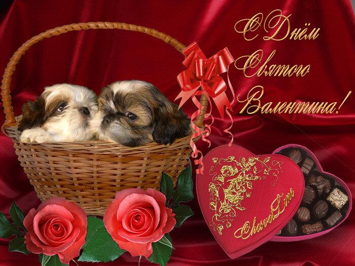 Картинки к дню святого валентина красивые, анимация