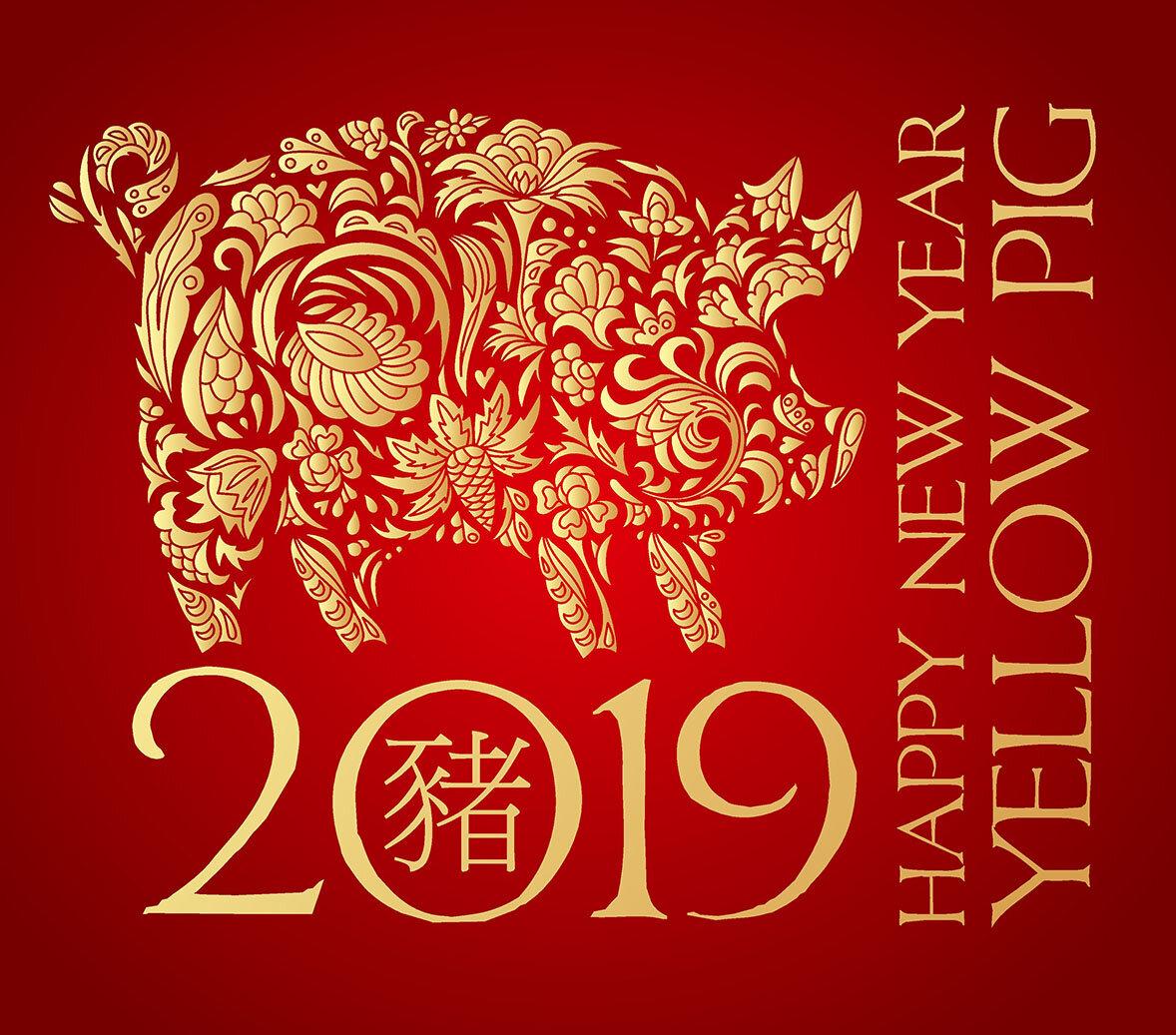 Открытки год свиньи китайскому календарю, анимации медицина поздравления