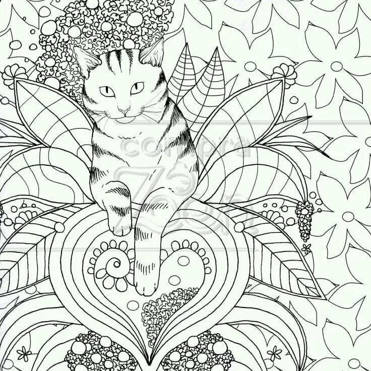 Картинка антистресс в цвете кошка