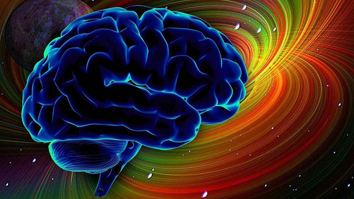Смешные картинки с надписями про мозг, всех земных благ