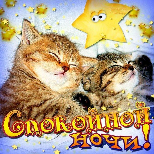Картинки девушке которая нравится спокойной ночи, поздравлениями смешные картинки