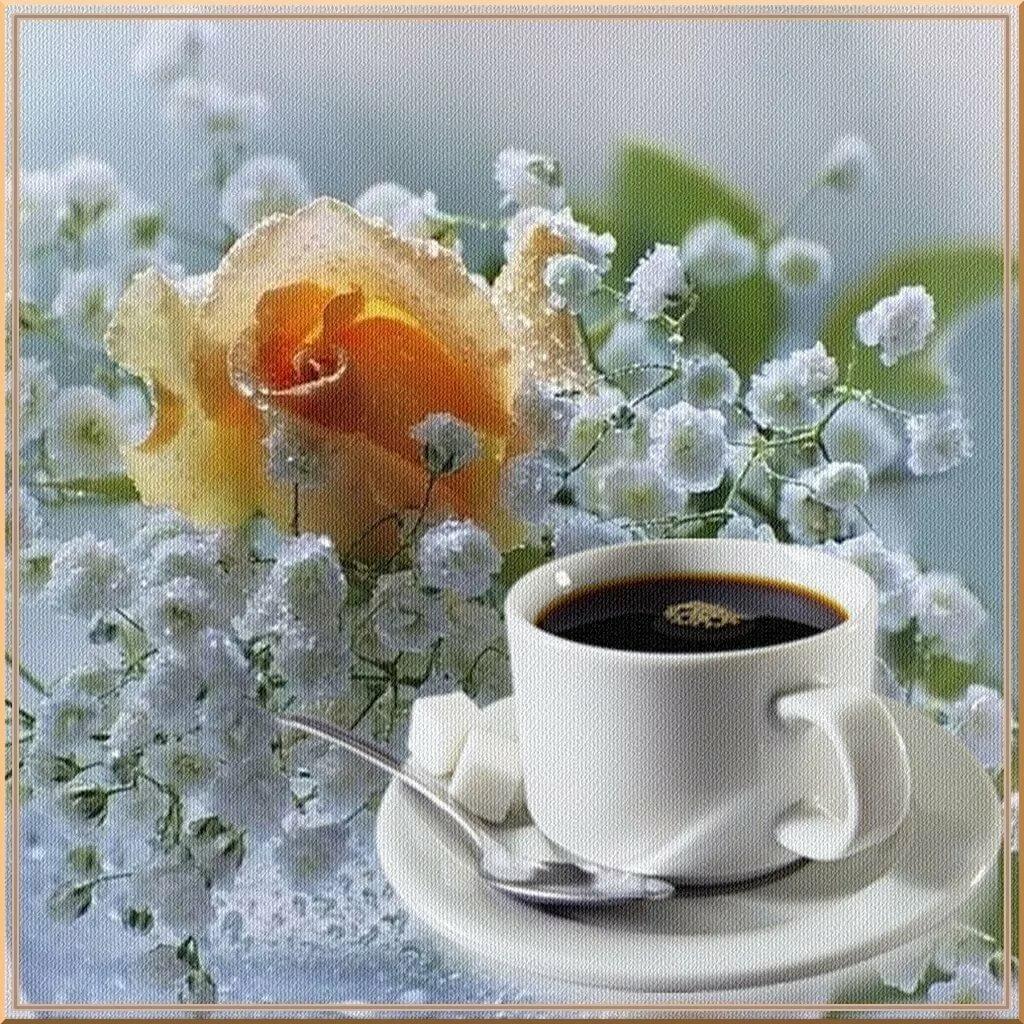 Открытки с миром и добром и прекрасным утром, прикольные гифки как