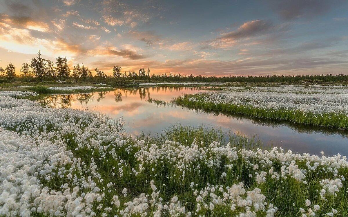 Привет, фото и картинки природы россии