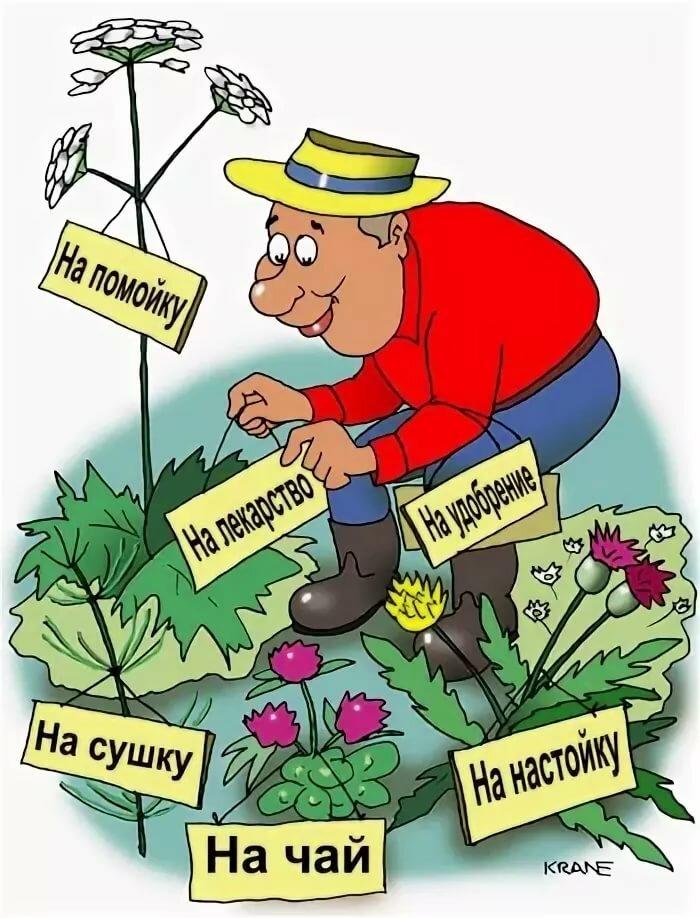 Открыток, открытка для садовода огородника