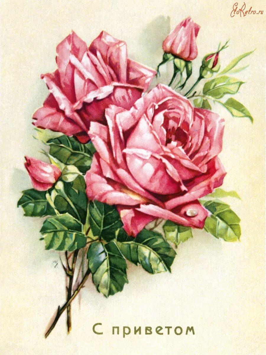 Цветы открытки разных лет, для воспитателя выпускной