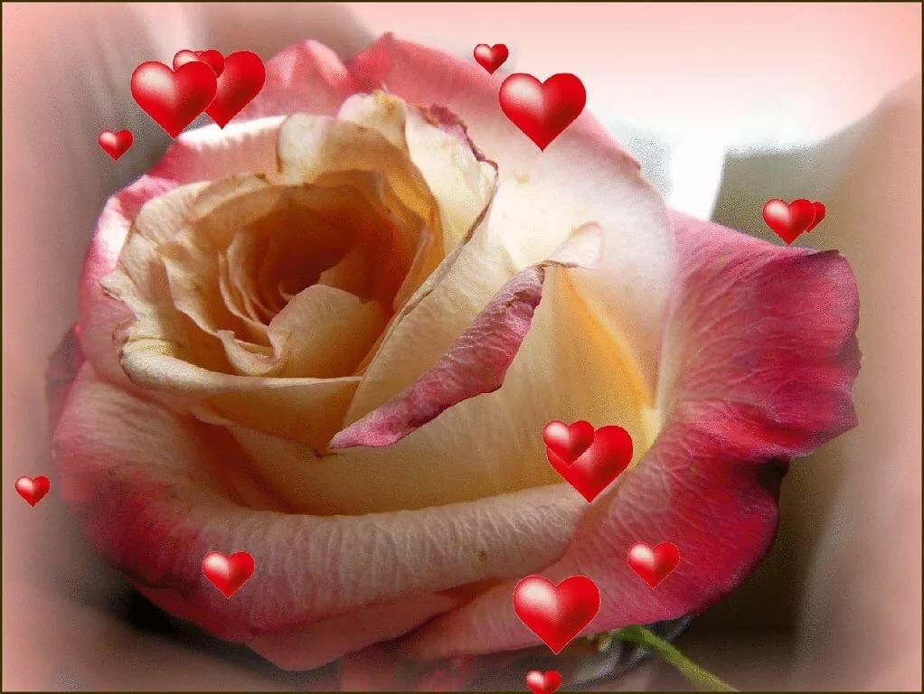 Для тебя с любовью и нежностью картинки