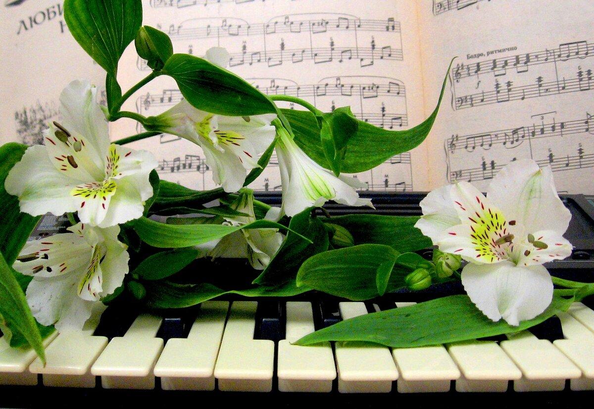 Картинки, создание поздравительных музыкальных открыток