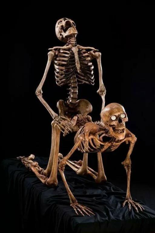 muzhik-trahaet-skeleta-foto-bludnitsa-v-vozraste