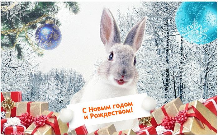 Днем окружающей, новый год картинки с поздравлениями и зайцами