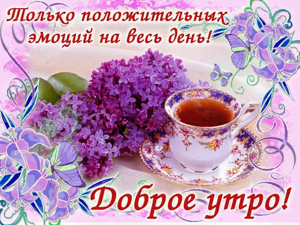 Поздравления именинами, картинка с добрым утром и прекрасным настроением