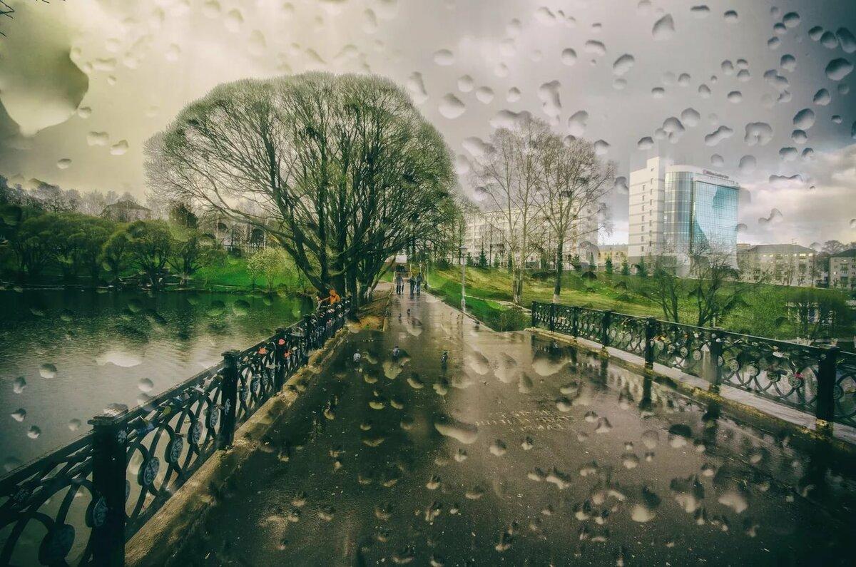 картинки дождь весной в городе готовых