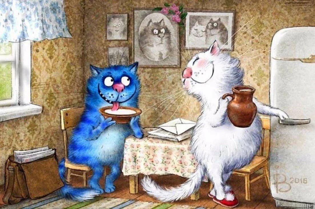Прикольные открытки кошек