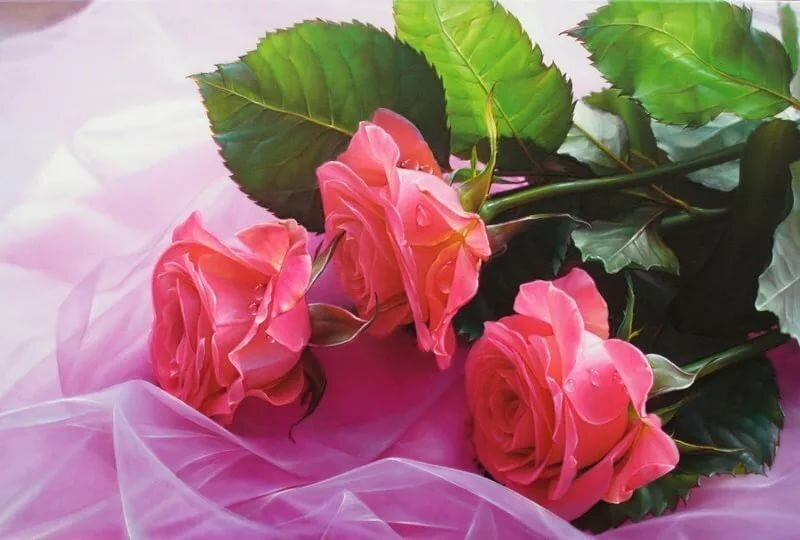 Открытка с розами спасибо за все