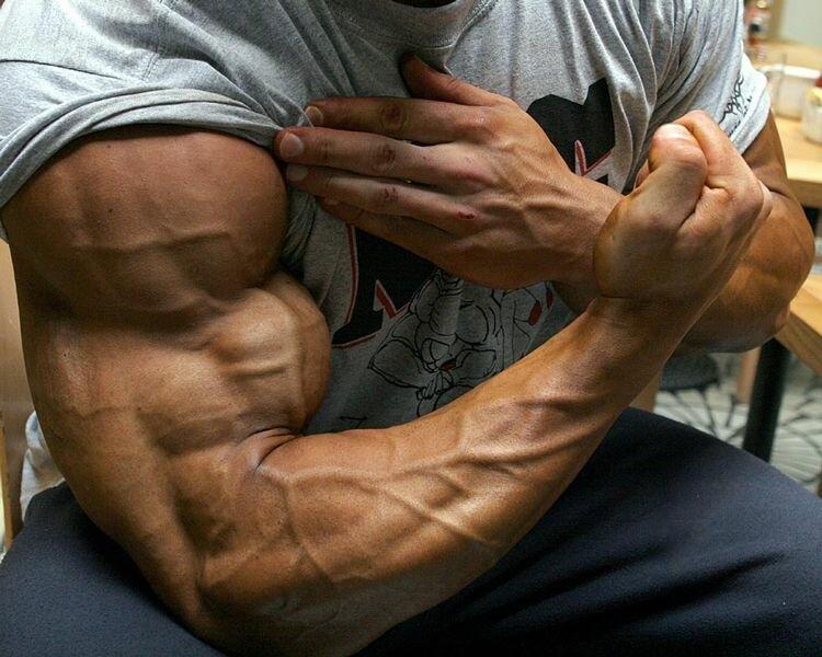 качать мускулы картинки утверждают очевидцы
