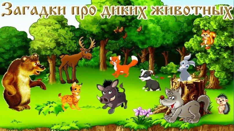 Картинки альбома о диких и домашних животных
