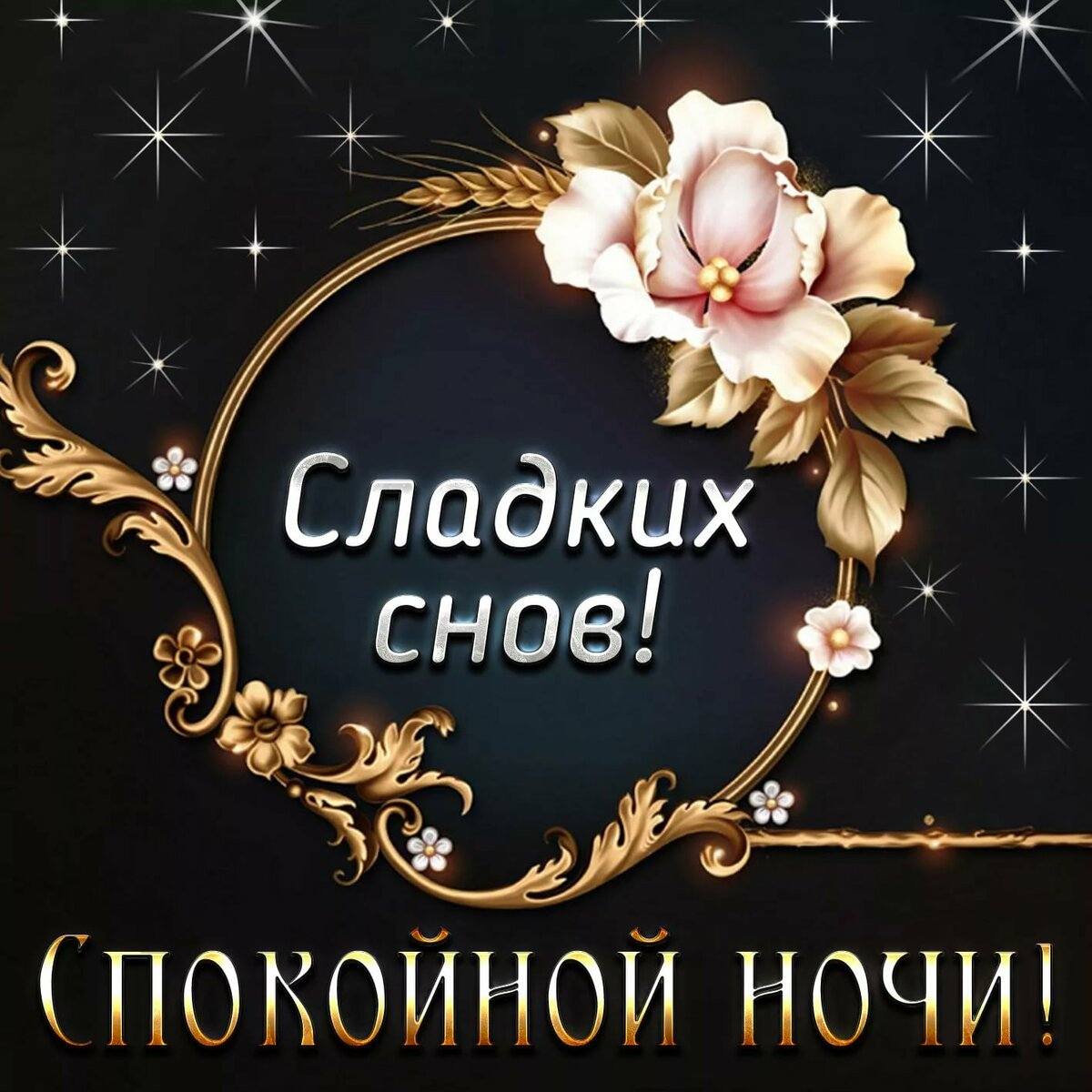 Открытки пожелание спокойной ночи женщине, крещения руси