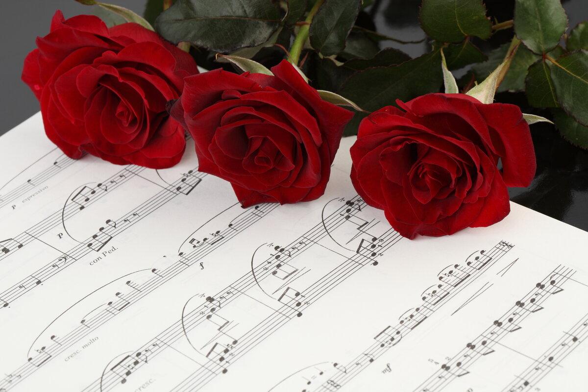 открытки с цветами в сопровождении песни нашей