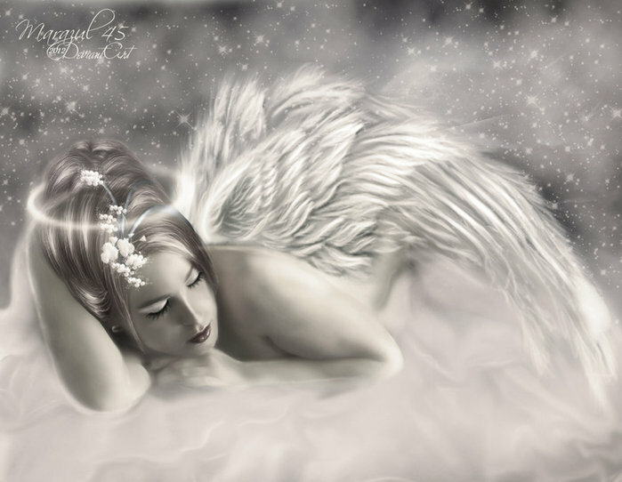 Картинки ангелы ночь любви