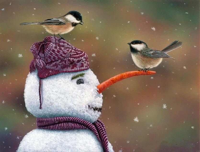Прикольные картинки с птицами зимой